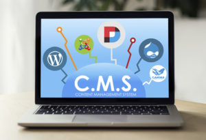 Content management system (CMS) by Canvas Pakistan
